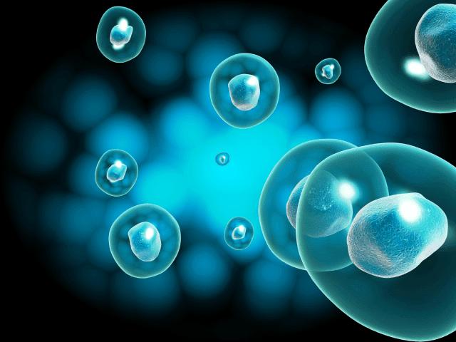 curso-medicina-regeneratiuva-online